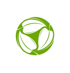 green leaves logo natural or organic symbol vector image