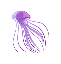 Jellyfish beautiful purple swimming marine vector