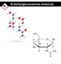 N-Acetylglucosamine NAG molecule vector