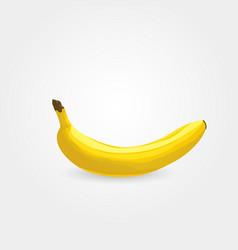 one ripe banana vector image