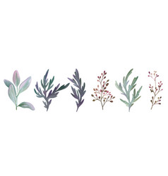set watercolor leaves and branches hand drawn vector image