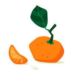 tangerine fruit mandarin slice cartoon vector image