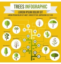 Tree infographic flat style vector