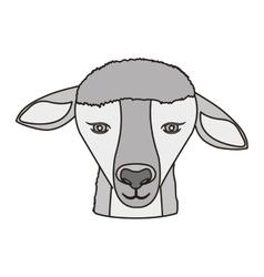 Lamb face icon vector