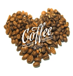 Roasted coffee beans vector image