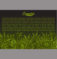 Cannabis green background vector