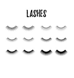 Eyelash collection thick and long lashes for vector