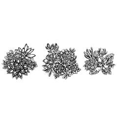 Flower bouquet black and white succulent vector