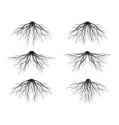set black tree roots outline vector image
