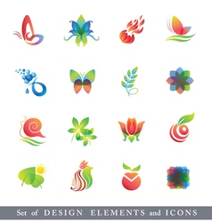 Set of Design Elements and Icons vector image