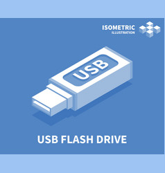 usb flash drive icon isometric template vector image