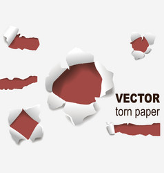 torn edges paper hole lacerated ragged edge and vector image