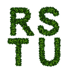 Alphabet rstu vector image