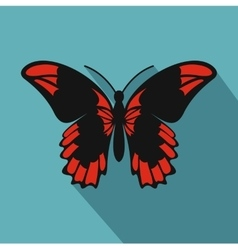 Beautiful butterfly icon flat style vector