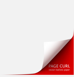 curled corner paper with shadow on red vector image