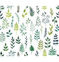 Green watercolor floral seamless pattern vector