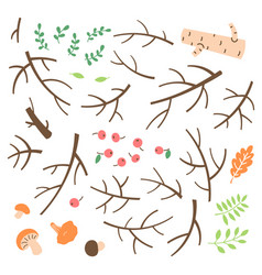 set branches twigs sticks drawn in a simple vector image