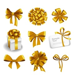 Set of gold gift bows with ribbons vector