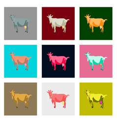 Set of in flat style goat vector