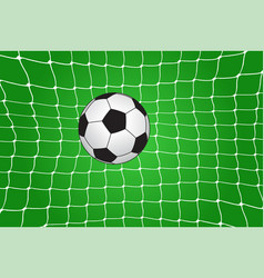Soccer ball in the net vector