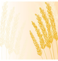 wheat doodles background1 vector image