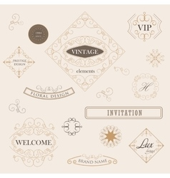 Flourish Border Corner and Frame collection vector image