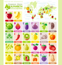 Alphabet food infographics fruit vegetable vector