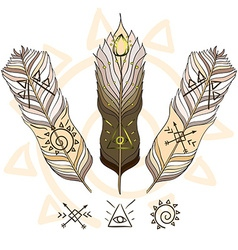 Boho feather vector