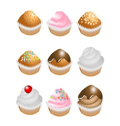 Cupcakes with cream vector