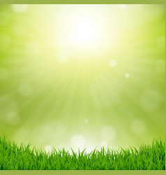 Grass border with nature background vector