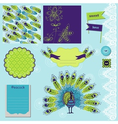 Peacock Theme vector image
