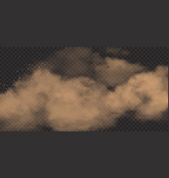 realistic sand cloud with stones and dirt dusty vector image