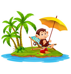 scene with monkey sitting on island on white vector image