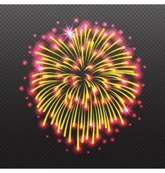 Set Festive Firework Salute Burst on Transparent vector image