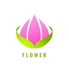 abstract flower logo design vector image
