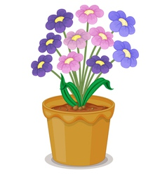 flowers and a pot vector image vector image
