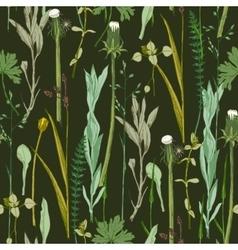 seamless herbal pattern vector image