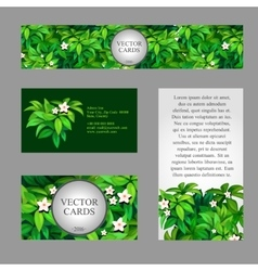 Cards with texture of green leaves vector image