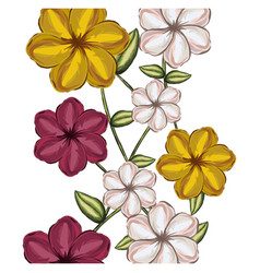 colorful background of malva flowers in colors vector image