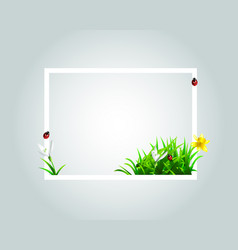 Frame with spring motive vector