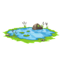 Picturesque water pond with reeds and stones vector