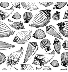 Sea shells seamless pattern hand drawn vector