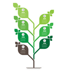 vertical green infographics or timeline the vector image
