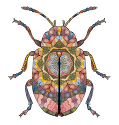 zentangle stylized beetle hand drawn decorative vector image