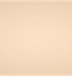 beige texture vector image