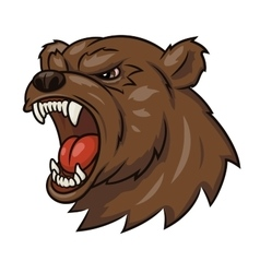 Angry bear head 3 vector image