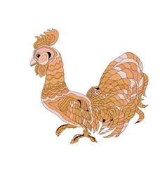 brown rooster on white backgroun vector image