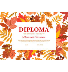 Diploma certificate autumn leaves and acorns vector