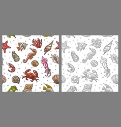 Seamless pattern sea shell coral cuttlefish vector