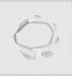 torn hole in paper on transparent background vector image